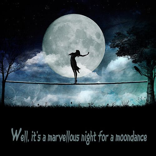It 39 s a marvelous night for a moondance the sketchy scribe for What does the song moon river mean